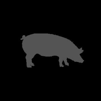 Porc entier environ 100kg prix sur poids brut avec os
